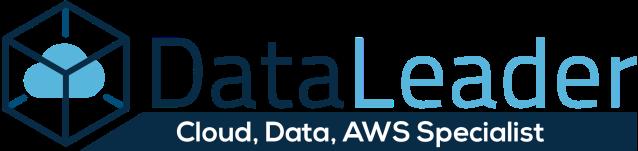 DataLeader.io Logo