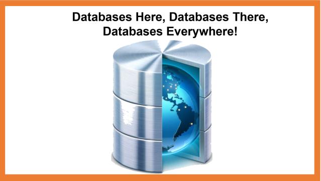 Database Evolution