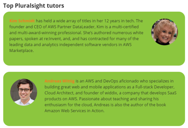 top pluralsight trainers